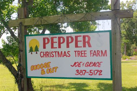 christmas tree farms with real estate in monroe or carbon county pa duck commander tour pepper s tree farm