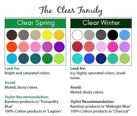clear color palette 25 best ideas about clear winter on winter