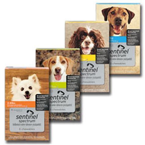 sentinel spectrum for dogs sentinel spectrum heartlandvetsupply