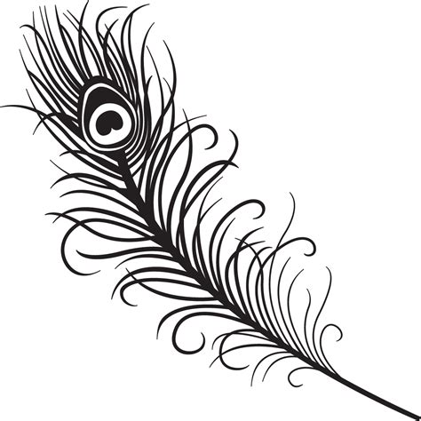 peacock feather clipart black and white free clipartbarn