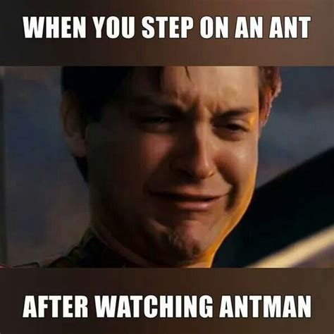Funny Marvel Memes - funny ant man meme pictures to pin on pinterest pinsdaddy