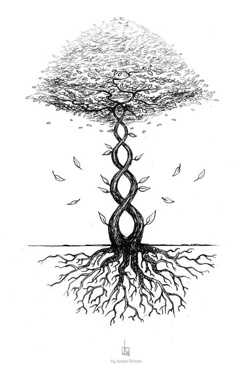 dna tree tattoo dna tree by 0jaco on deviantart