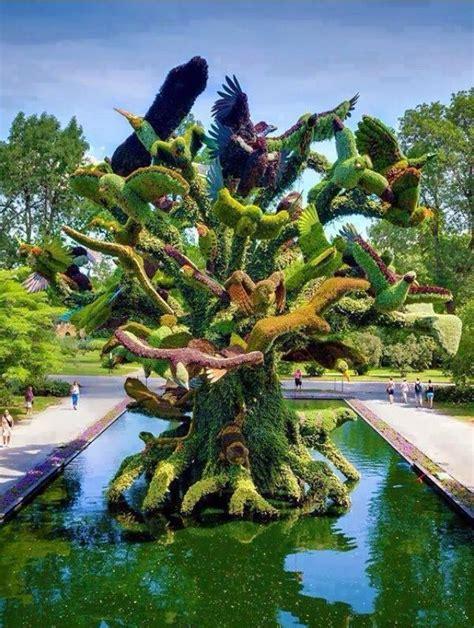 montreal botanical garden a flower the world
