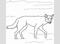 Australian Dingo coloring page | Free Printable Coloring Pages Easy Tribal Animal Drawings
