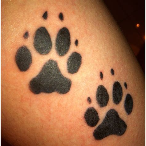 wolf paw print tattoo designs 25 best ideas about wolf print on wolf