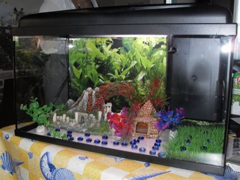 decoration aquarium maison photo d 233 cor aquarium maison chinoise