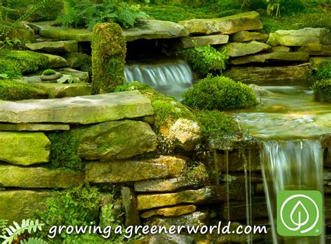 Moss And Gardens by Water Features On Ponds Waterfalls And