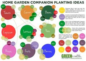 Companion Planting Garden Layout Tomatoes Cucumbers Secrets Of Companion Planting Popular Planting Combinations