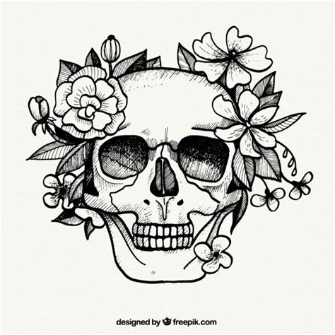 hand painted skull and flowers vector free download