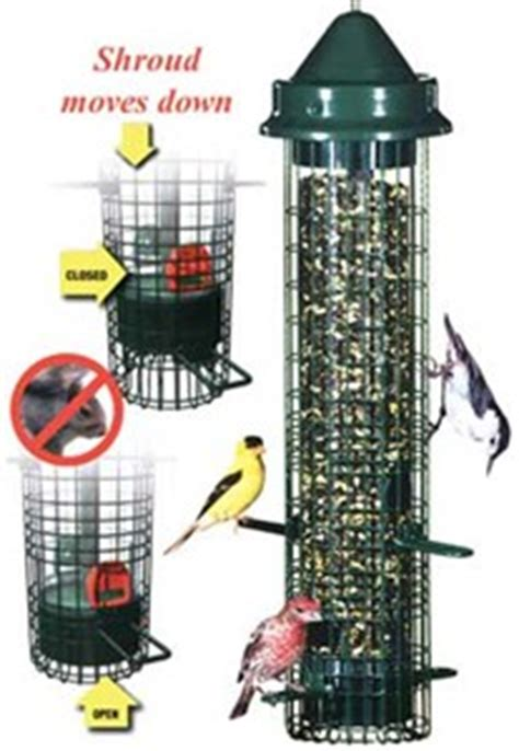 brome 1015 squirrel buster classic squirrel proof bird feeder