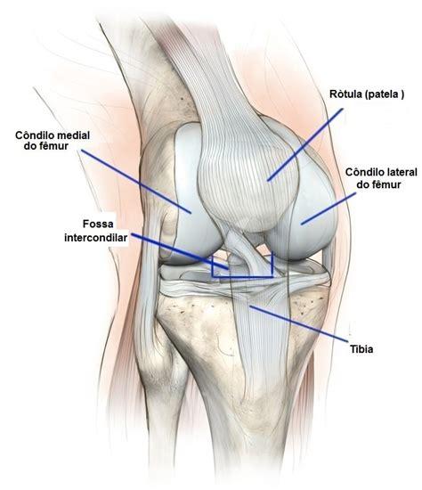 collaterale interno ginocchio s 237 ndrome da dor femoropatelar sintomas exerc 237 cios e
