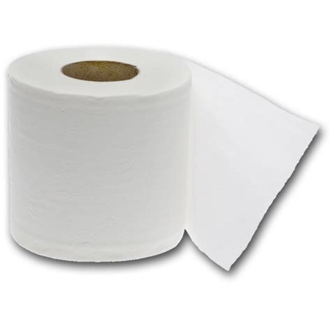 Toilet Paper - toilet paper 2 ply desperate households