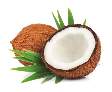skin coconut how to regain skin with coconut a closer look at the amazing benefits