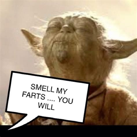 26 best everyone loves yoda images on pinterest star