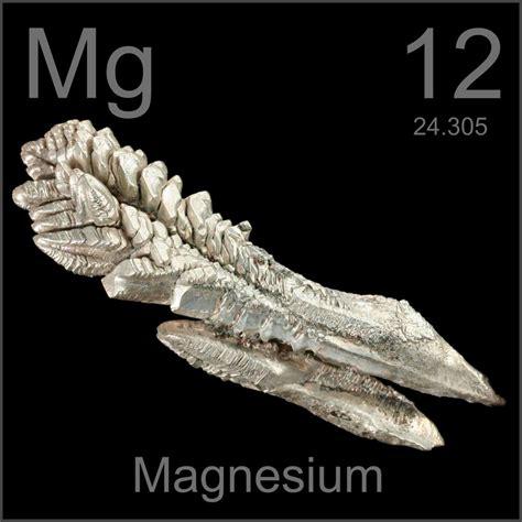 el elemento the element 8425343402 el magnesio el elemento indispensable respuestanatural
