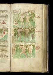 Hrl By Tje Herbal Illuminated Manuscripts See All Of The Items In This
