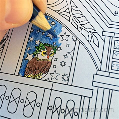 The Time Garden the time garden coloring book by song finding magick