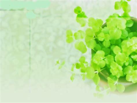 themes cho powerpoint 2010 tải ngay bộ theme powerpoint đẹp về thi 234 n nhi 234 n si 234 u lung linh