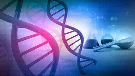 Emergency Dna Testing Denied by Convicted In Killing Sedative Pills Denied Dna