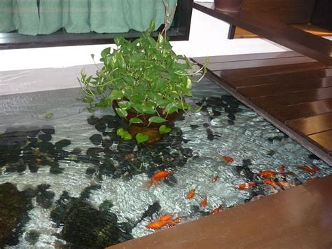 indoor fish pond 25 best ideas about indoor pond on pinterest lily com