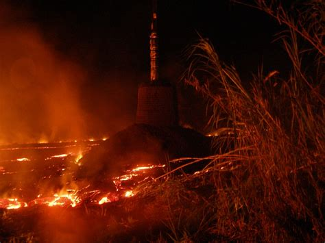hawaii island electric company lava topples utility poles in leilani estates big island now