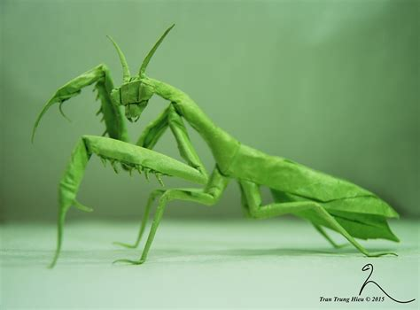 Origami Mantis - 24 incredibly realistic looking origami insects