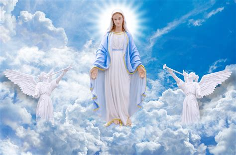 forgiving a marian novena of healing and peace books 54 day rosary novena day 3054 day rosary novena day 30