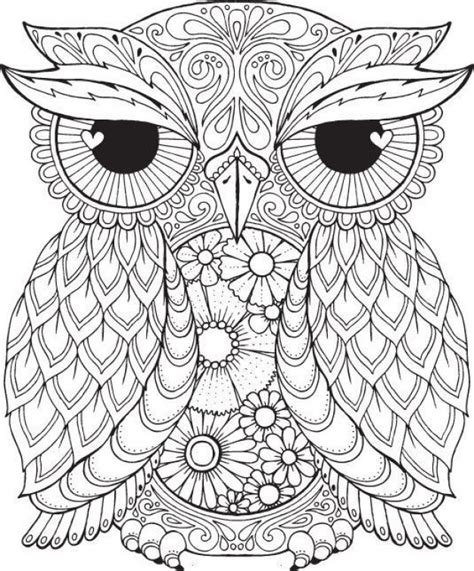 coloring pages for adults owls 1000 ideas about colouring pages on