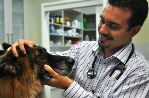 veterinarian near me veterinarian near me riverside veterinary clinic