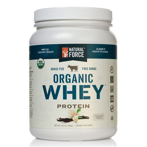 best protein the best protein powder a review buyer s guide