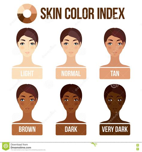 types of skin color chart of color clipart clipground