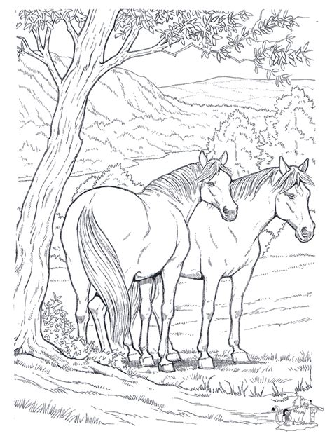coloring pages animals horses free printable coloring pages for