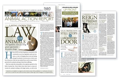 newspaper layout design ideas newspaper layout design ideas www imgkid com the image