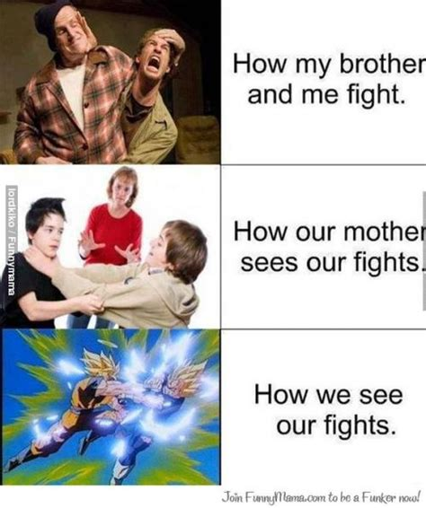 Siblings Fighting Meme - how my brother and me fight how our mother sees our