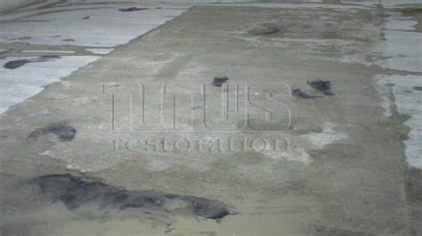 Industrial Flooring  Polished Concrete  Titus Restoration