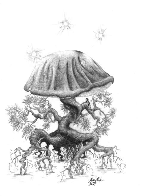 mushroom drawings the magic art of mushrooms
