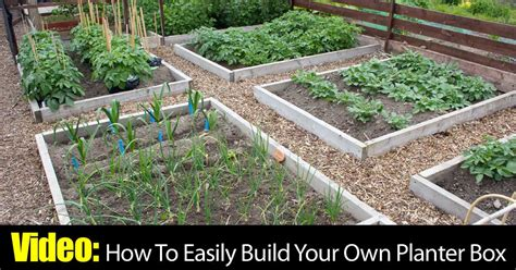 Video How To Easily Build Your Own Planter Box Build Your Own Planter Box
