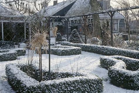 pflanzen winterfest einpacken so machen sie ihre pflanzen winterfest planungswelten