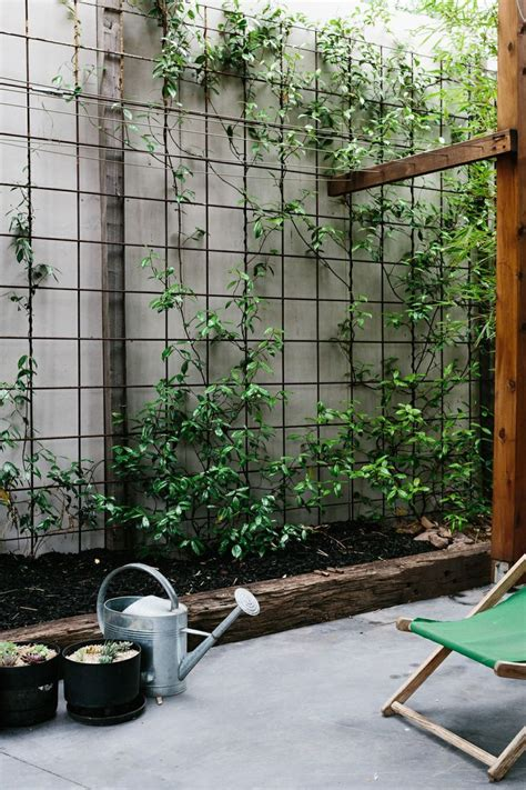 backyard wall 25 best ideas about garden design on pinterest