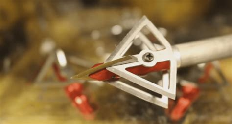 how to install the wildgame nudge testing out the shuriken broadhead