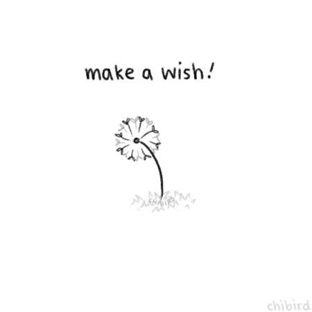 dandelion wish quotes | tumblr