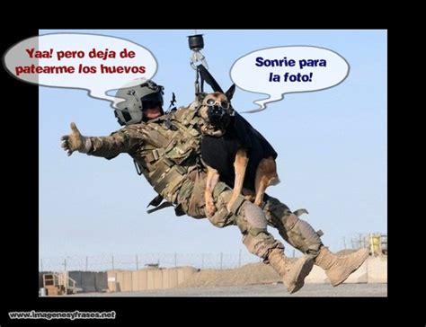 imagenes para whatsapp militares imagenes graciosas perro militar imagenes para facebook