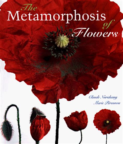 theme quotes in metamorphosis the metamorphosis of flowers by claude nuridsany