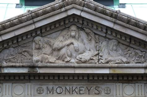 Monkey House by At The Zoo What The Monkey House Accommodated The New