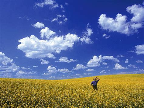 prairie images cbc ca seven wonders of canada your nominations prairie sky canadian prairies