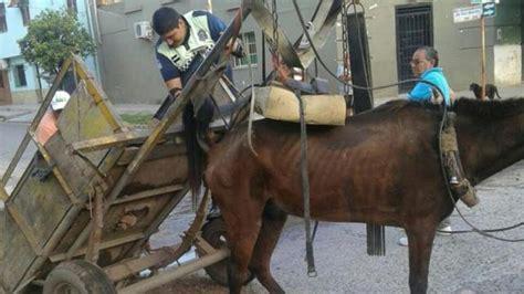 caballo cogida brutal por detras dos hombres fueron aprehendidos por golpear brutalmente a