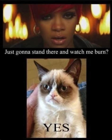 Grumpy Cat Yes Meme - 8 best images about grump e cat on pinterest gift