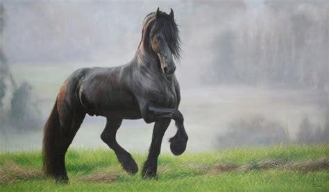 imagenes artisticas de toros cuadros pinturas oleos pinturas toros y caballos al 211 leo