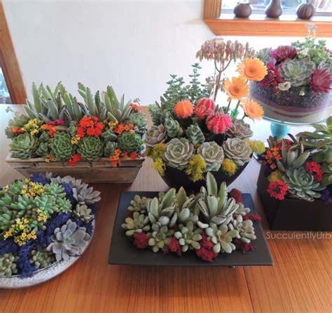 succulent centerpieces for sale succulent centerpieces wood table succulents