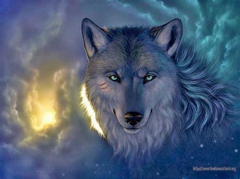 lobo full hd fondo de pantalla and fondo de escritorio wallpapers hd lobos hd varias resoluciones 15